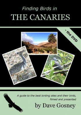 Finding Birds in the Canaries - The DVD (Region 2)