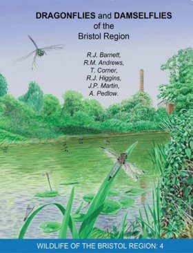 Dragonflies and Damselflies of the Bristol Region