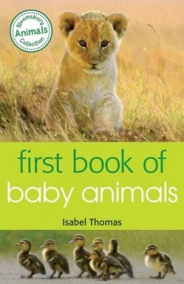 First Book of Baby Animals