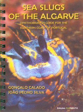 Sea Slugs of the Algarve