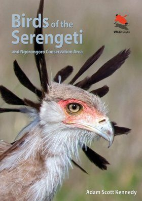 Birds of the Serengeti and Ngorongoro Conservation Area