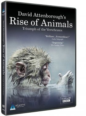 David Attenborough's Rise of Animals (Region 2)