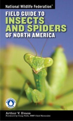 National Wildlife Federation Field Guide to Insects and Spiders & Related Species of North America