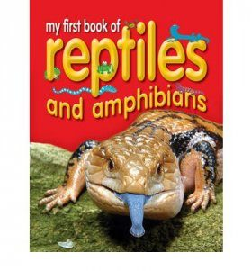My First Book of Reptiles and Amphibians
