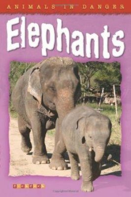 Animals in Danger: Elephants