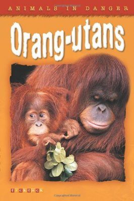Animals in Danger: Orang-utans
