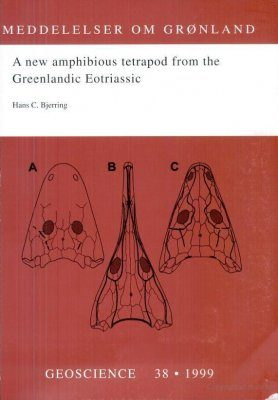 A New Amphibious Tetrapod from the Greenlandic Eotriassic