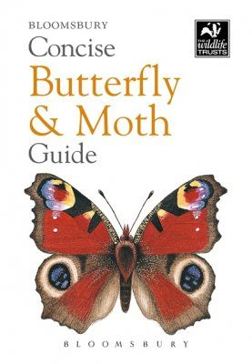 Bloomsbury Concise Butterfly & Moth Guide
