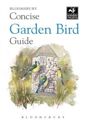 Bloomsbury Concise Garden Bird Guide