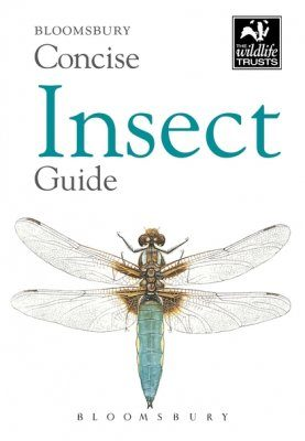 Bloomsbury Concise Insect Guide