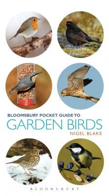 Bloomsbury Pocket Guide To Garden Birds