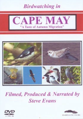 Birdwatching in Cape May (All Regions)