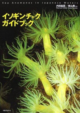 Isoginchakugaidobukku [Sea Anemones in Japanese Waters]