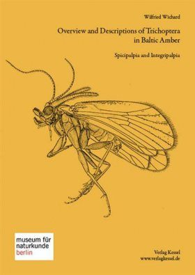 Overview and Descriptions of Trichoptera in Baltic Amber: Spicipalpia and Integripalpia