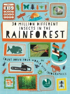 The Big Countdown: 30 Million Different Insects in the Rainforest