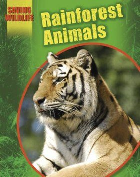 Saving Wildlife: Rainforest Animals