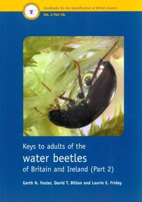 RES Handbook, Volume 4, Part 5b: Keys to Adults of the Water Beetles of Britain and Ireland (Part 2)