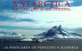Antarctica: The Last Great Wilderness - 16 Postcards of Penguins & Icebergs