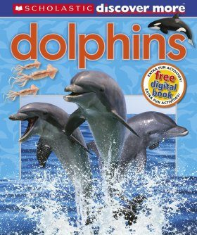 Discover More: Dolphins