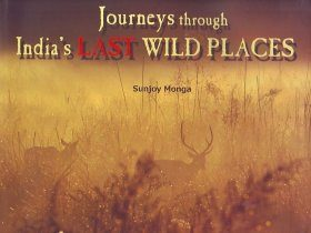 Journeys through India's Last Wild Places