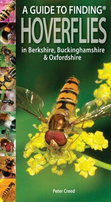 A Guide to Finding Hoverflies in Berkshire, Buckinghamshire & Oxfordshire