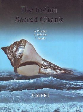 The Indian Sacred Chank