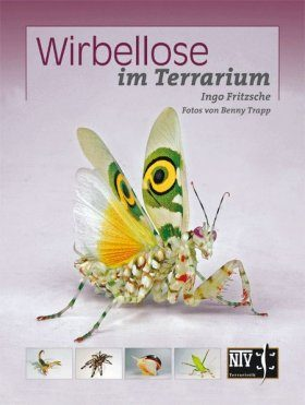 Wirbellose im Terrarium [Invertebrates in the Terrarium]