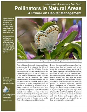 Pollinators in Natural Areas