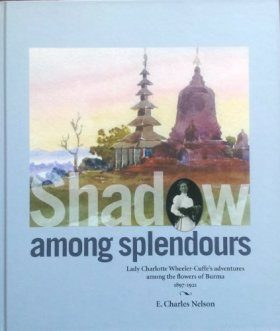 Shadow among Splendours