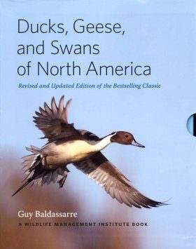 Ducks, Geese, and Swans of North America (2-Volume Set)