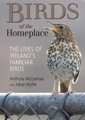 Birds of the Homeplace