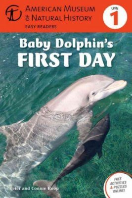 Baby Dolphin's First Day