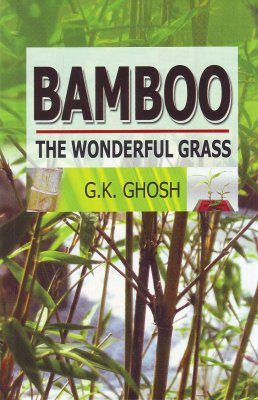 Bamboo: The Wonderful Grass