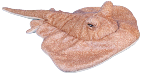 Stingray Soft Toy