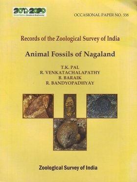 Animal Fossils of Nagaland