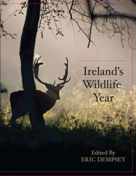 Ireland's Wildlife Year