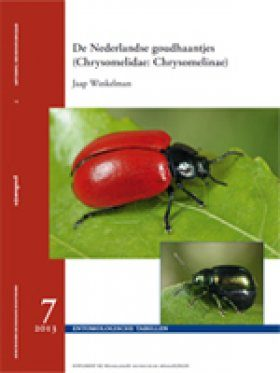 De Nederlandse Goudhaantjes (Chrysomelidae: Chrysomelinae) [The Dutch Leaf Beetles]