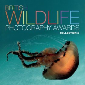 British Wildlife Photography Awards, Collection 5