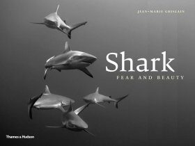 Shark: Fear & Beauty