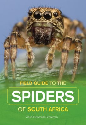 Field Guide to the Spiders of South Africa