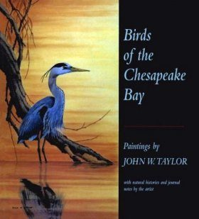 Birds of the Chesapeake Bay