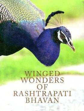 Winged Wonders of Rashtrapati Bhavan
