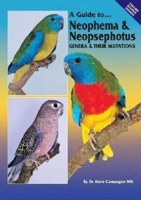 A Guide to Neophema and Neopsephotus Genera and their Mutations
