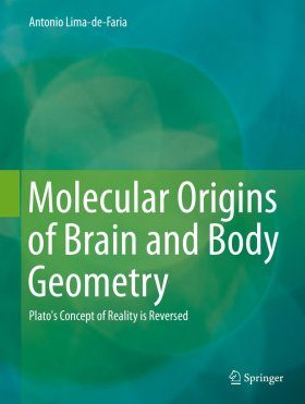 Molecular Origins of Brain and Body Geometry