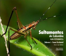 Saltamontes de Colombia - Guía Fotográfica, Volumen 1: Fauna Occidental (Chocó y Eje Cafetero) [Grasshoppers of Northwest South America - A Photo Guide, Volume 1: The Western Fauna (North Chocó, Central and Western Cordillera)]