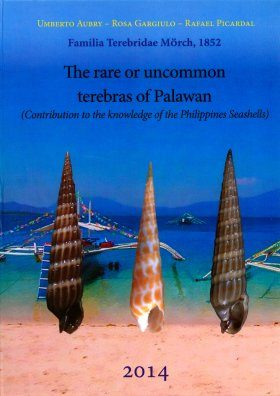 The Rare or Uncommon Terebras of Palawan