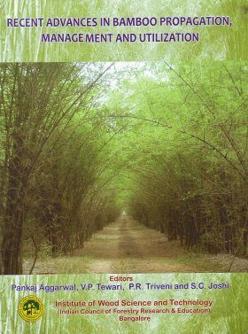 Recent Advances in Bamboo Propagation, Management and Utilization