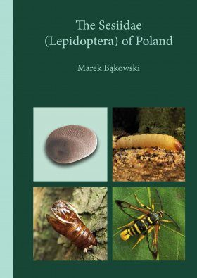 The Sesiidae (Lepidoptera) of Poland