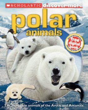 Discover More: Polar Animals