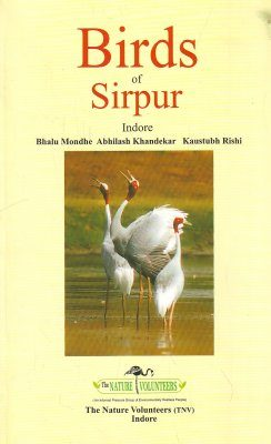 Birds of Sirpur Indore